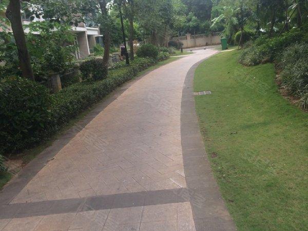 椰子郎花园户型图实景图片