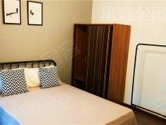 南华苑 户型3室1厅 精装公寓 地铁沿线