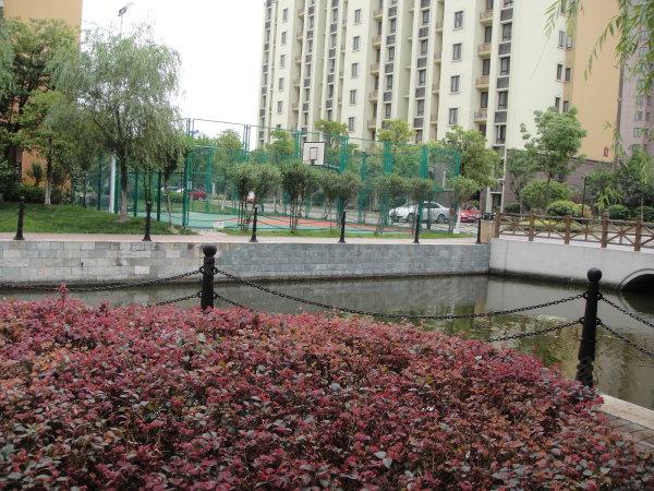 新城翡翠湾户型图实景图片