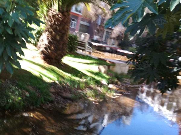 湖畔之梦户型图实景图片
