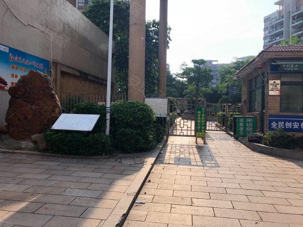 活力粤港西区户型图实景图片