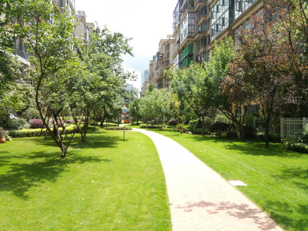 恒大中央公园(别墅)户型图实景图片