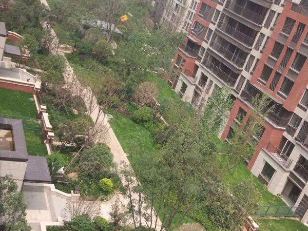 金地格林小城戶型圖實景圖片