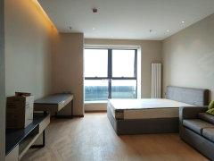 海河大观 豪华俩室通透南北品质拎包入住随时看房