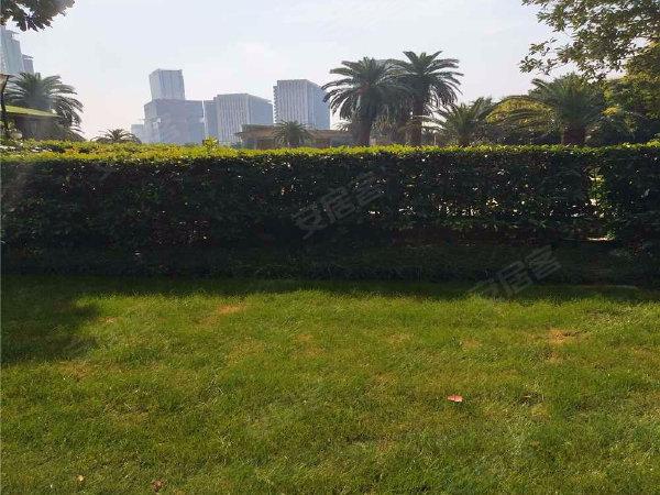 世茂滨江花园(北区)户型图实景图片