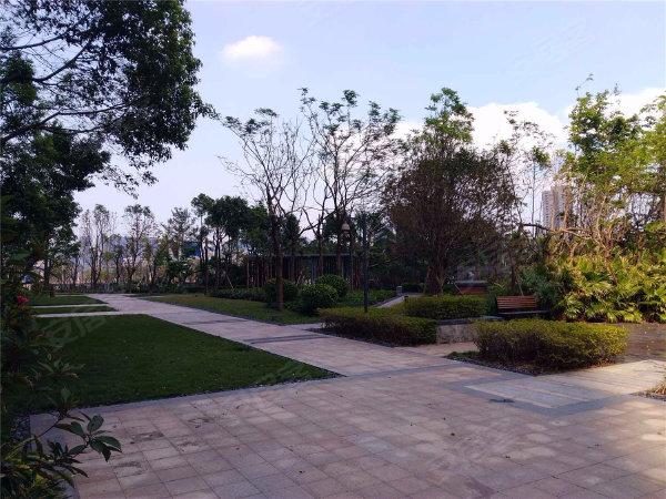 中信红树湾北区户型图实景图片