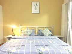 定福庄 珠江绿洲家园 达人寓直租 无杂费 给你家的感觉
