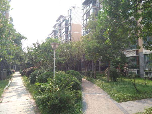 南湖沁康园户型图实景图片