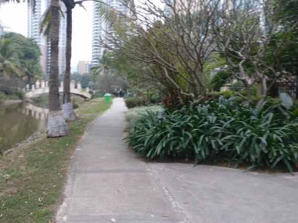 海怡湾畔户型图实景图片