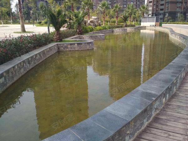 惠景园户型图实景图片