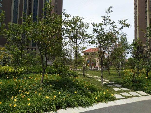 锦绣山河(西区)户型图实景图片