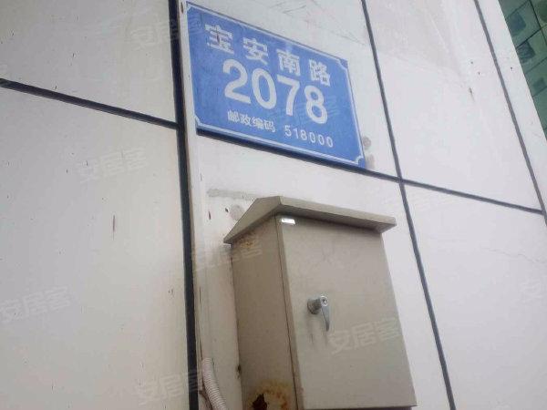 深港豪苑户型图实景图片