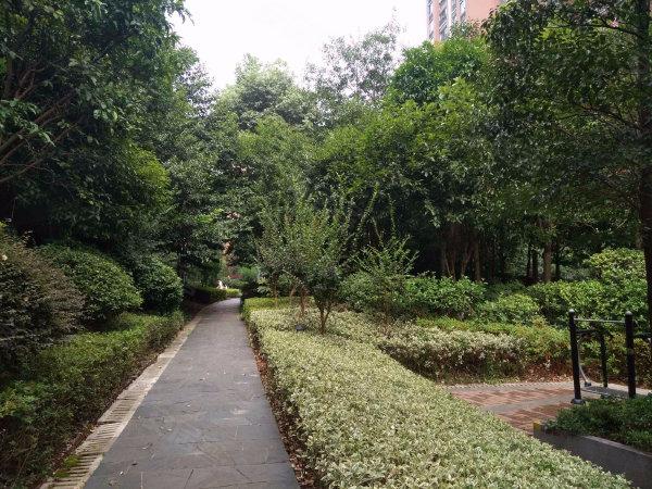 华润凤凰城(二期)户型图实景图片