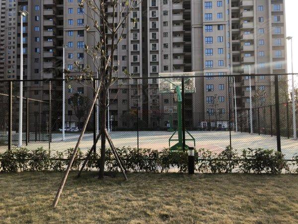 碧桂园生态城左岸户型图实景图片