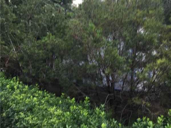 宏大北园户型图实景图片