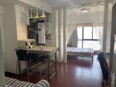 东方国际公寓 45平 超精装 三连大衣柜 1700交三