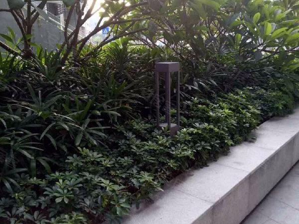 大冲新城花园户型图实景图片