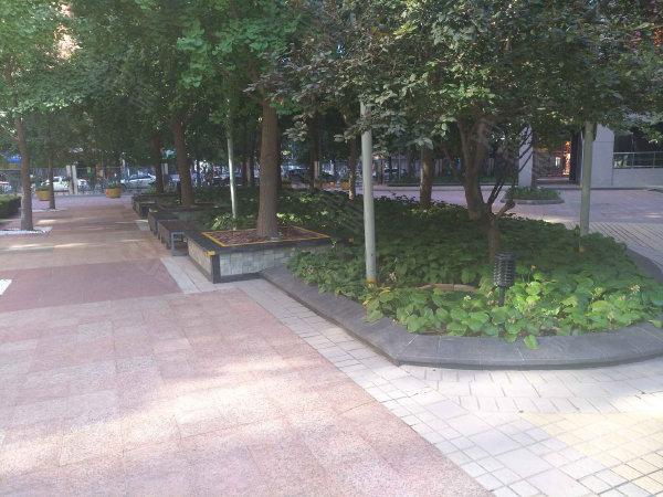 金地国际花园户型图实景图片