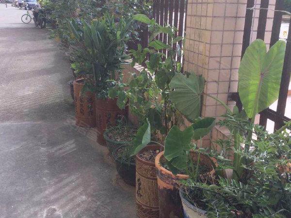 通博花园户型图实景图片