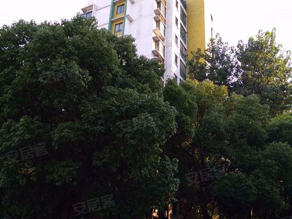 青城之恋户型图实景图片