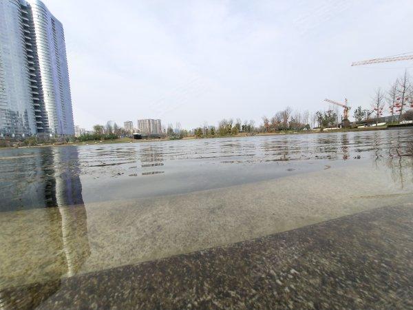 金地天府城戶型圖實景圖片
