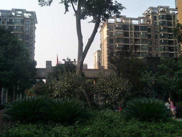 城投瀚城户型图实景图片