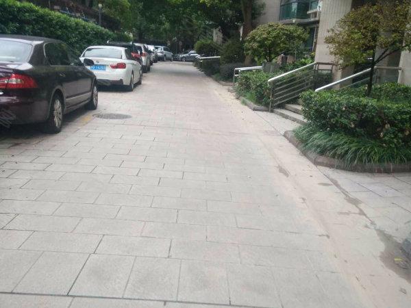 金沙雅苑滨湖世家户型图实景图片