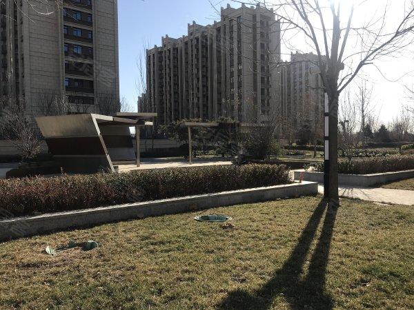 天保绿城户型图实景图片