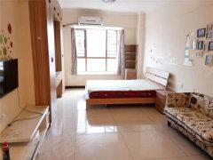 联泰金中环 居家精装公寓两房出租 超高性价比 家电齐全 诚租