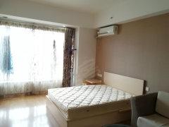 融科精装公寓 采光极好 干净舒适 品质生活 随时看房