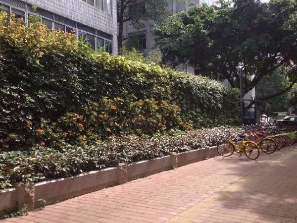 东风中路360号宿舍大楼户型图实景图片