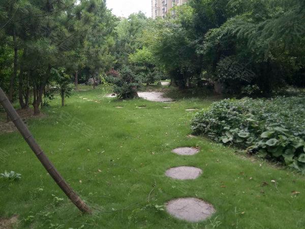 和欣国际花园户型图实景图片
