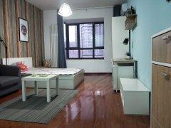 龙子湖微时代精装公寓一室独卫随时看房拎包入住押一付一能做饭