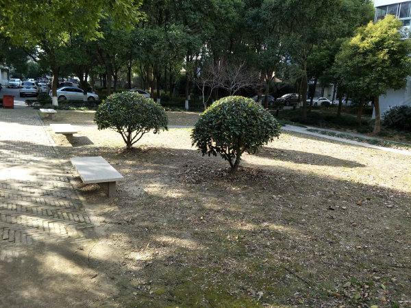 康桥半岛城中花园户型图实景图片