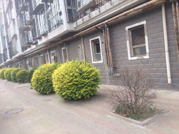 普红馨苑户型图实景图片