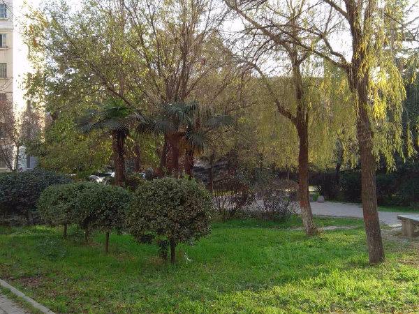 安谷苑小区户型图实景图片