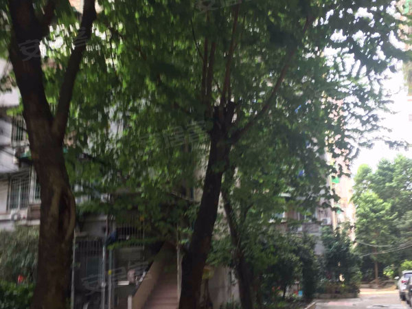 梅花路电力设计院宿舍户型图实景图片