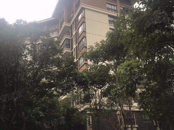 紫园B区户型图实景图片