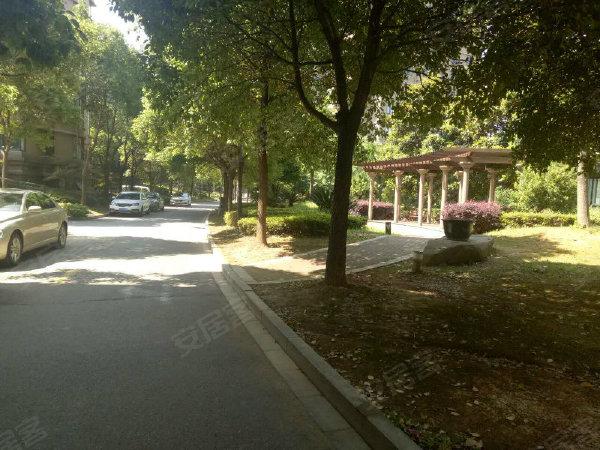 星元南岸花园(东区)户型图实景图片