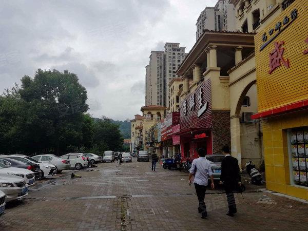 中惠香樟绿洲户型图实景图片