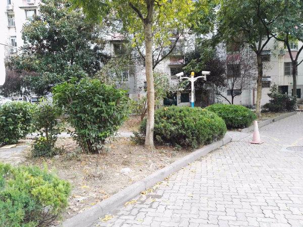 三林苑户型图实景图片