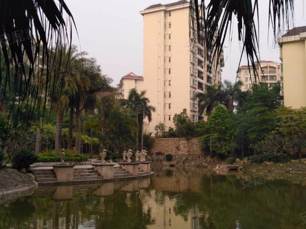 华南御景园户型图实景图片