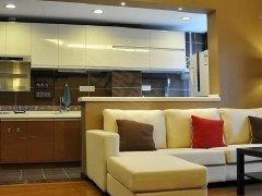 洲际酒店茂业百货地铁1号线口 清扬御庭豪装一室一厅出租 真实