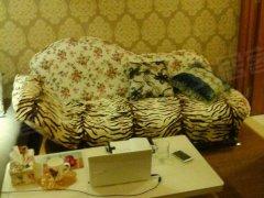 万达精装1室1厅公寓,家电齐全,拎包入住,紧邻新华道看房方便
