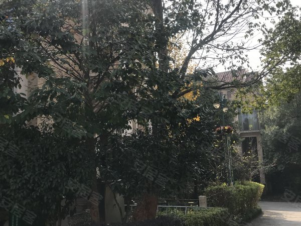 盈峰翠邸戶型圖實景圖片