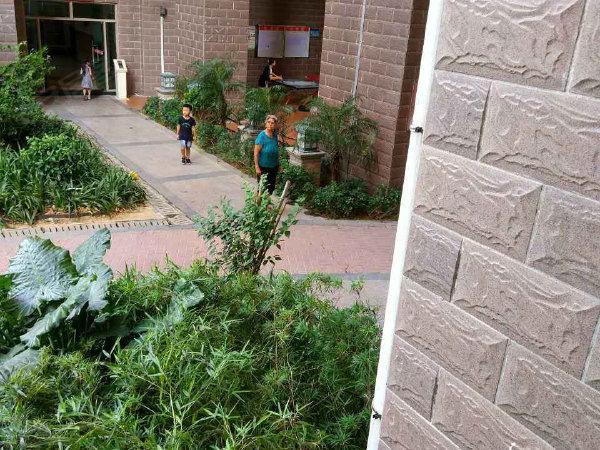 富丽达花园户型图实景图片