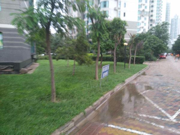 珠江绿洲家园户型图实景图片