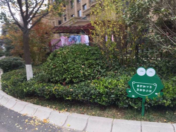 绿地香树花城户型图实景图片