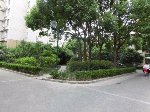 平阳绿家园户型图实景图片