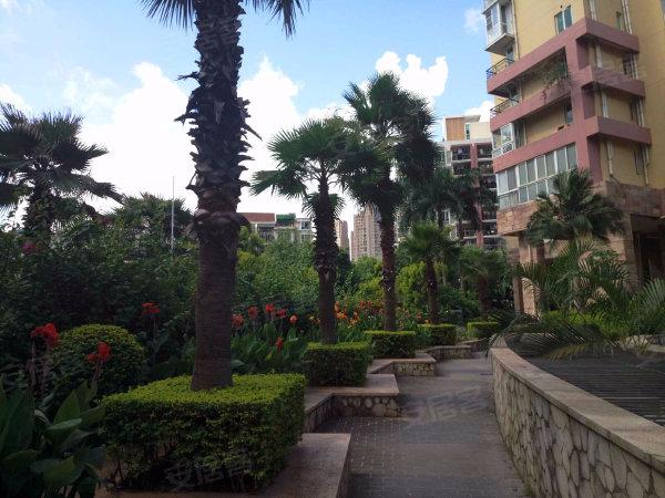 阳光棕榈园户型图实景图片